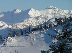 Enjoy the world-class downhill and cross country skiing at Bear Valley