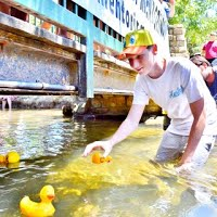 2014 duck race photo