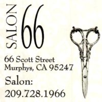 salon-66-logo