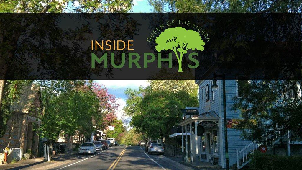 Holiday Shopping Inside Murphys